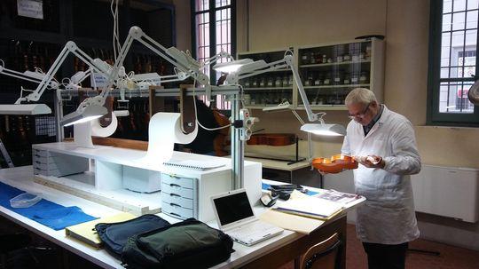 Istituto d,Istruzione Superiore Antonio Stradivari Negroni_result