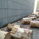 A log flock